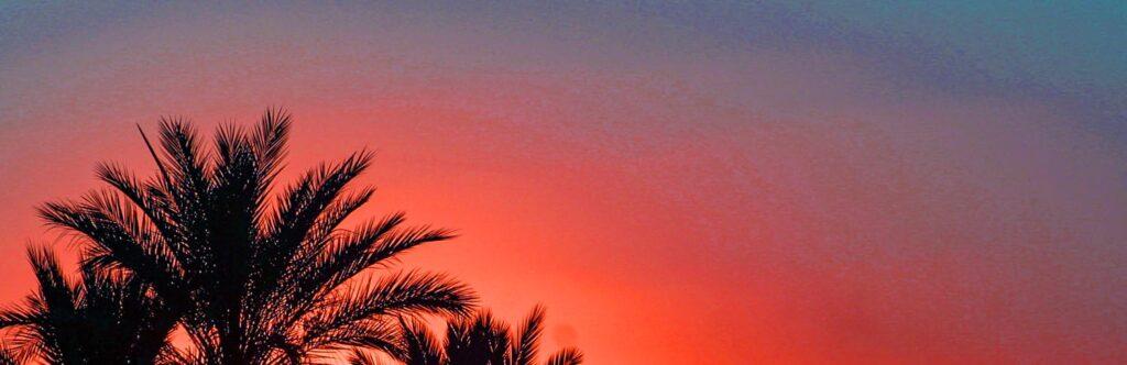 tunisia tozeur 3594 sunrise